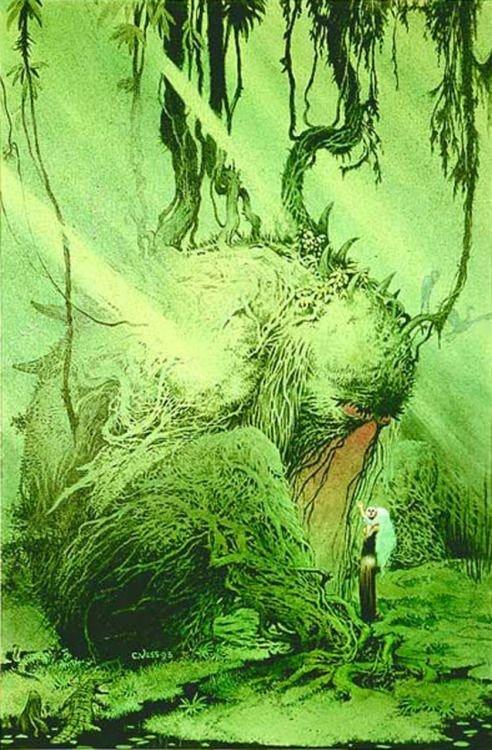 Un'altra Illustrazione per una delle copertine di Swamp Thing, di charles Vess © degli aventi diritti