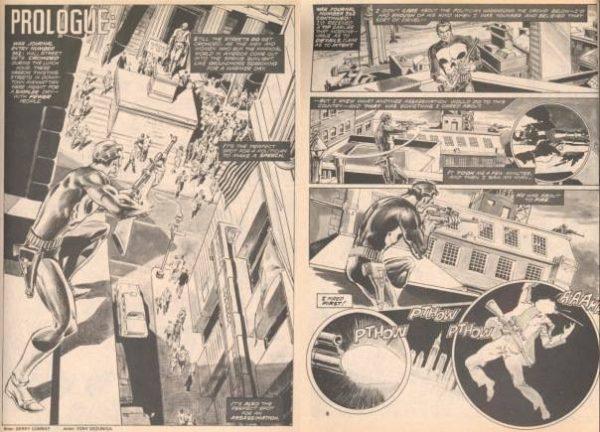 doppia pagina estratta da MARVEL PREVIEW 2, dove sono narrate le origini de Il  Punitore