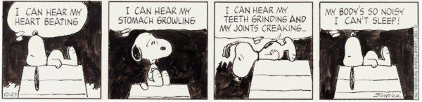 """Strip: peanuts. estratto della mostra """"STRIP! LA GRANDE AVVENTURA DEL FUMETTO AMERICANO"""""""